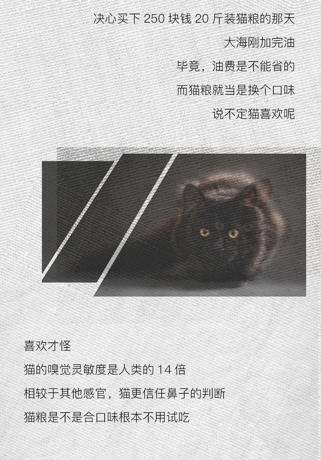 长图导出~~~_03.jpg